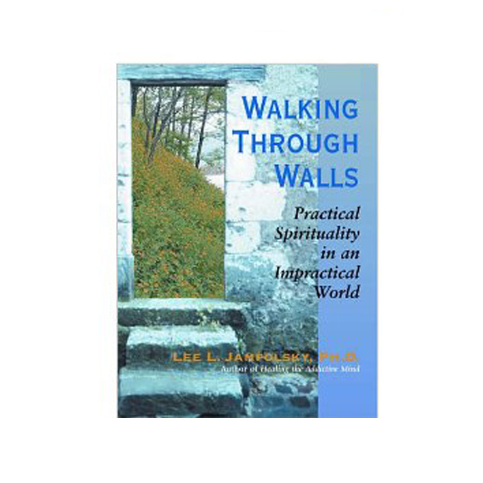 Walking Through Walls
